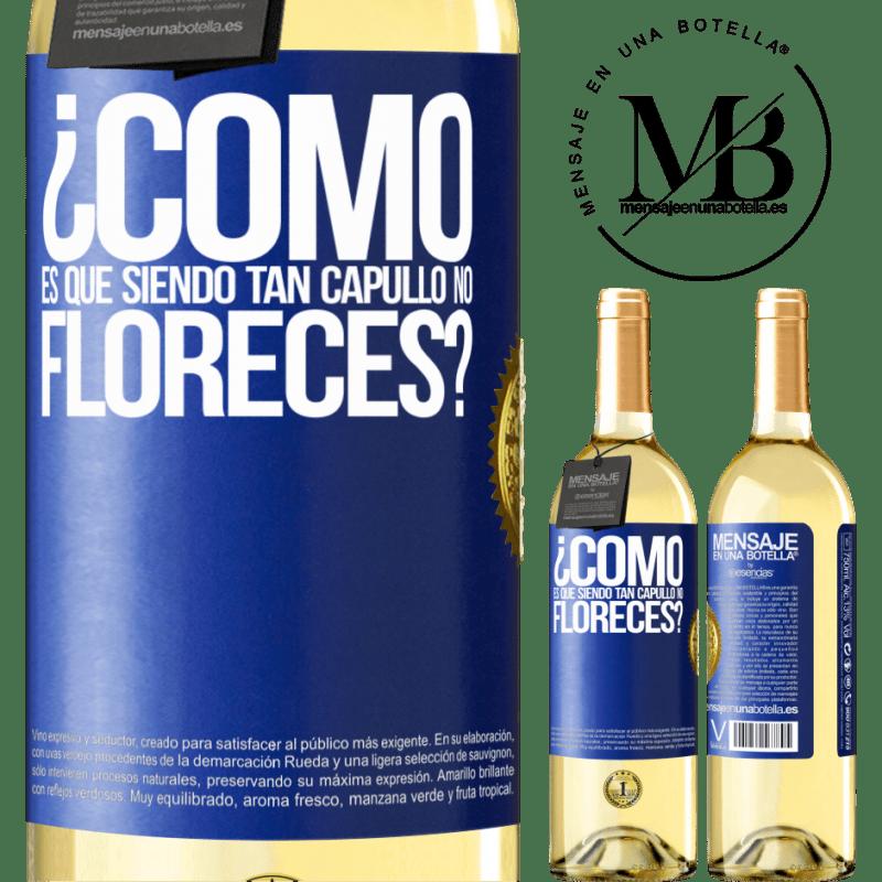 24,95 € Envío gratis | Vino Blanco Edición WHITE ¿Cómo es que siendo tan capullo no floreces? Etiqueta Azul. Etiqueta personalizable Vino joven Cosecha 2020 Verdejo