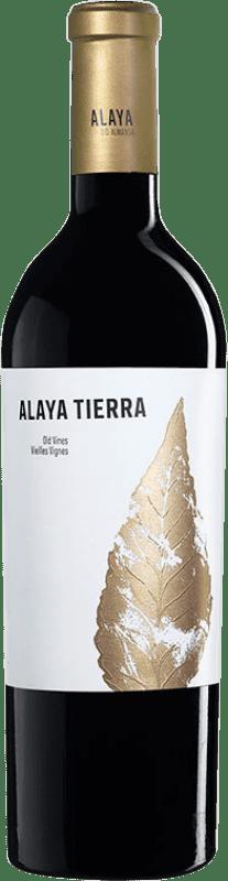 28,95 € Envío gratis | Vino tinto Atalaya Alaya Tierra Crianza D.O. Almansa Castilla la Mancha España Garnacha Tintorera Botella 75 cl