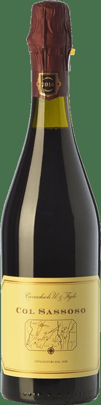 12,95 € | Red wine Cavicchioli Col Sassoso D.O.C. Lambrusco Grasparossa di Castelvetro Emilia-Romagna Italy Lambrusco Grasparossa Bottle 75 cl
