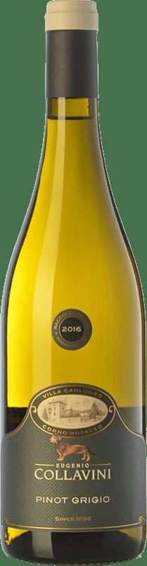 16,95 € Free Shipping | White wine Collavini Pinot Grigio Villa Canlungo D.O.C. Collio Goriziano-Collio Friuli-Venezia Giulia Italy Pinot Grey Bottle 75 cl
