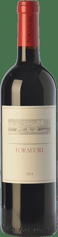 25,95 € 免费送货 | 红酒 Foradori I.G.T. Vigneti delle Dolomiti 特伦蒂诺 意大利 Teroldego 瓶子 75 cl