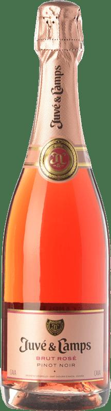 13,95 € | Rosé sparkling Juvé y Camps Rosé Brut Joven D.O. Cava Catalonia Spain Pinot Black Bottle 75 cl