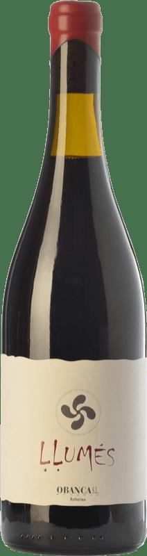 16,95 € Envío gratis | Vino tinto Obanca Llumés Crianza España Verdejo Negro Botella 75 cl