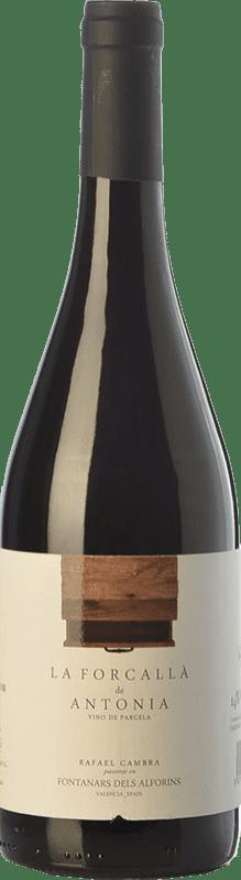11,95 € Envío gratis | Vino tinto Rafael Cambra La Forcallà de Antonia Joven D.O. Valencia Comunidad Valenciana España Forcayat del Arco Botella 75 cl