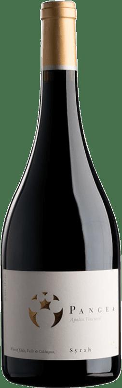 45,95 € | Red wine Viña Ventisquero Pangea Chile Syrah Bottle 75 cl