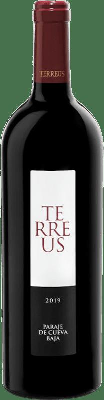93,95 € Envío gratis | Vino tinto Mauro Terreus I.G.P. Vino de la Tierra de Castilla y León Castilla y León España Botella 75 cl