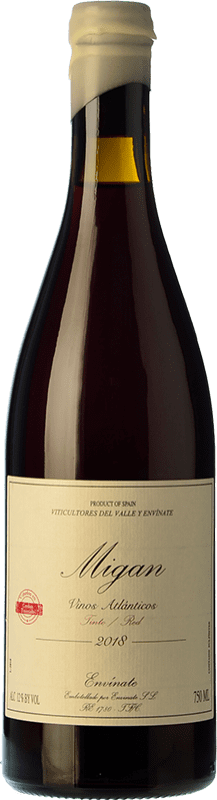 28,95 € Envío gratis | Vino tinto Envínate Migan Islas Canarias España Listán Negro, Malvasía Negra, Vijariego Negro Botella 75 cl