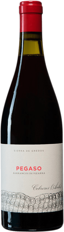 31,95 € Free Shipping | Red wine Telmo Rodríguez Pegaso Barrancos de Pizarra I.G.P. Vino de la Tierra de Castilla y León Castilla y León Spain Grenache Bottle 75 cl