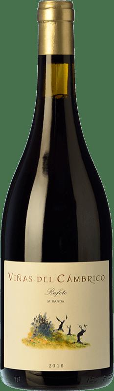 15,95 € Free Shipping | Red wine Cámbrico Viñas del Cámbrico Miranda I.G.P. Vino de la Tierra de Castilla y León Castilla y León Spain Tempranillo, Grenache, Rufete Bottle 75 cl